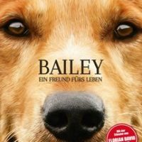 Bailey ein Freund fürs Leben