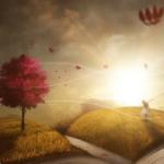 Blog-Abonnement Deine Vorteile