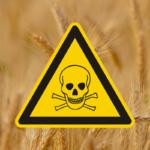 Schadstoffe in Lebensmitteln – Was uns wirklich krank macht