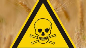 Schadstoffe in Lebensmitteln Was uns wirklich krank macht