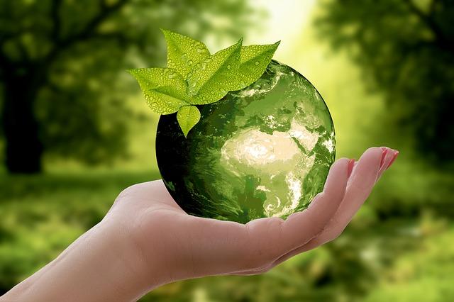 10 Dinge die jeder tun kann Welt besser machen Nachhaltigkeit