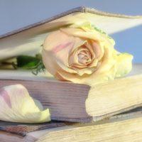 Spirituelle Romane Top 10