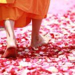 Woran erkennt man einen guten Guru?
