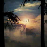 Die schönsten Zitate über Jenseits und Reinkarnation