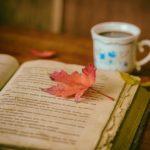 Bücher versus Social Media: Warum Lesen so wichtig ist