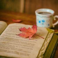 Bücher versus Social Media Warum Lesen so wichtig ist