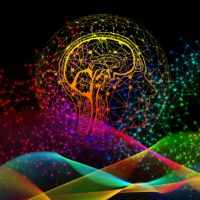 Die Wirkung von Magic Mushrooms auf das Bewusstsein Psilocybin in moderaten und hohen Dosen